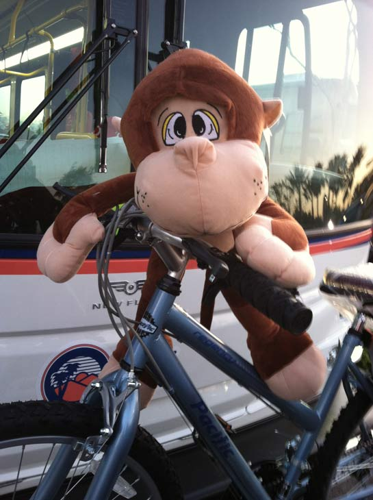 Stuffed animals and bikes were some of many donations at the &#39;Spark of Love Toy Drive&#39; at Mathis Brothers in Ontario on Friday, Dec. 2, 2011. <span class=meta>(KABC Photo)</span>