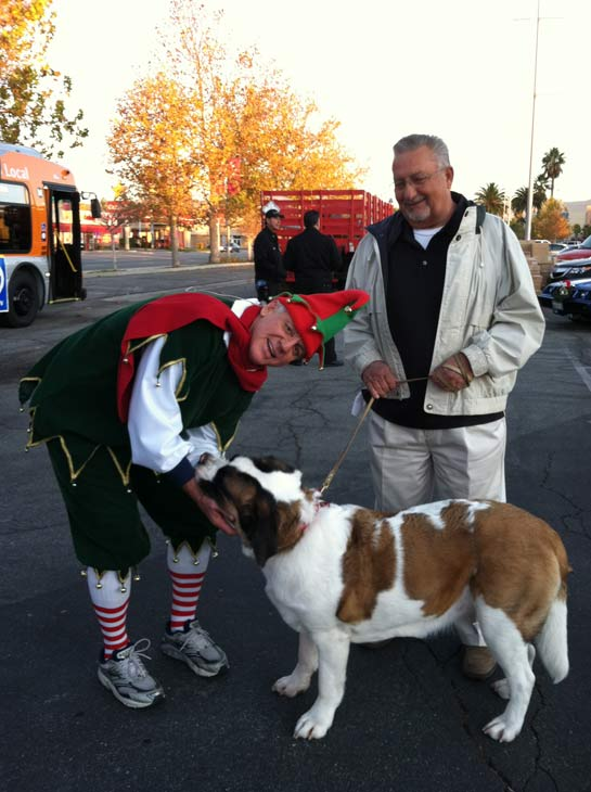 Garth the Elf poses with a dog helper at the &#39;Spark of Love Toy Drive&#39; at Westfield Topanga Mall in Canoga Park on Friday, Dec. 9, 2011. <span class=meta>(KABC Photo)</span>