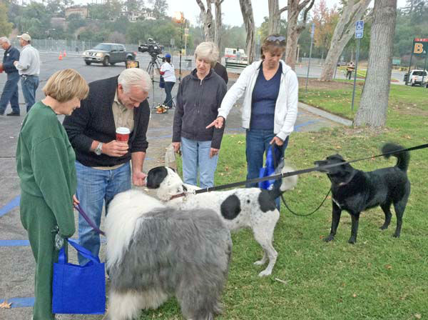 ABC7 Eyewitness News weathercaster Garth Kemp meets some of his canine fans at the ABC7 Sandy relief drive at the Rose Bowl in Pasadena on Friday, Nov. 2, 2012. <span class=meta>(KABC)</span>