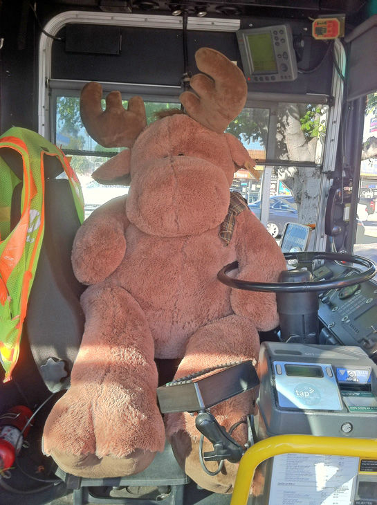Moose the bus driver poses for a picture inside a stuffed bus at the Stuff-A-Bus toy drive at the Westfield Topanga mall at Canoga Park on Friday, Dec. 14, 2012. <span class=meta>(KABC Photo)</span>