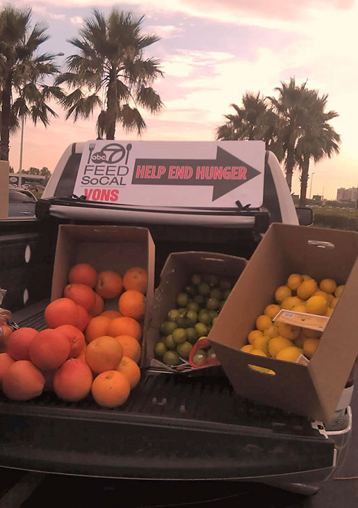 "<div class=""meta ""><span class=""caption-text "">HomeGrown Organic Farms donated 25,000 pounds of locally grown, organic produce at the Feed SoCal event in Ontario on Friday, July 26, 2013. (KABC Photo)</span></div>"