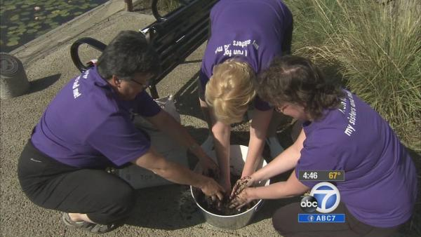 Cancer survivors get dirty for good cause