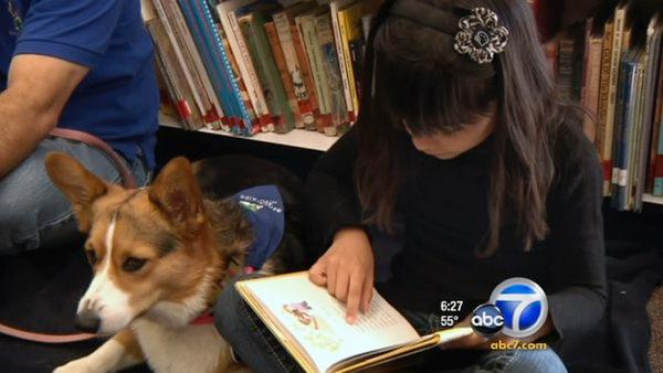 Therapy dogs help kids learn to read