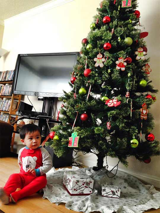 "<div class=""meta ""><span class=""caption-text "">ABC7 viewer Mark Anthony Lacbay shared this snapshot. Use #ABC7HomeForTheHolidays on Facebook, Twitter and Instagram to share your holiday photos with ABC7. We'll feature some of the best on our newscasts and here on abc7.com! (ABC7 viewer Mark Anthony Lacbay)</span></div>"