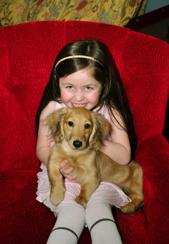 ABC7 viewer Grady Gonzales from Sherman Oaks sent in this photo of Olivia Gonzales, age 6, and her four-month-old, long-haired Dachshund puppy, Slippers. Celebrate National Puppy Day by sending photos of your pup to ABC7.   <span class=meta>(KABC Photo)</span>