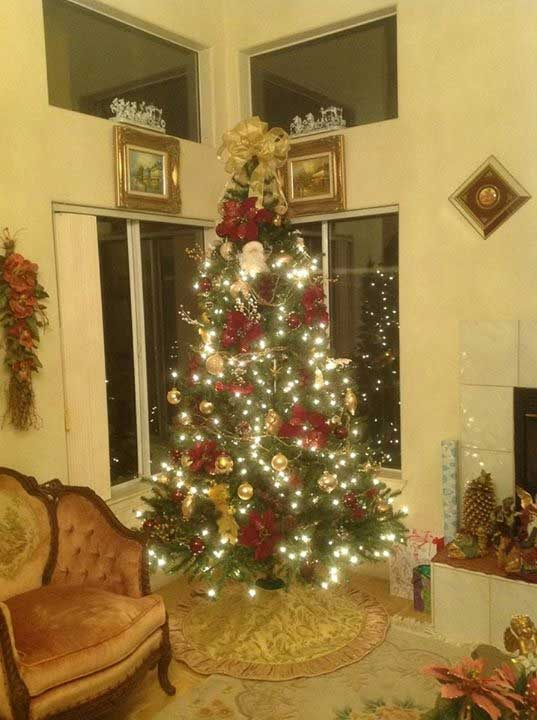 ABC7 viewer Yolande Atarian shared this snapshot. Use #ABC7HomeForTheHolidays on Facebook, Twitter and Instagram to share your holiday photos with ABC7. We&#39;ll feature some of the best on our newscasts and here on abc7.com! <span class=meta>(ABC7 viewer Yolande Atarian)</span>