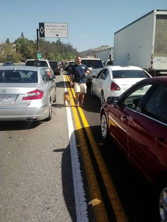 An ABC7 viewer sent in this photo of walking on the 60 Freeway after an accident involving three vehicles brought traffic to a standstill on Friday, Oct. 19, 2012.