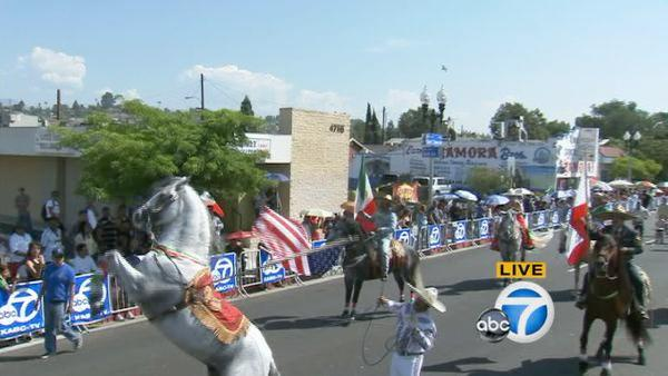 Horses are shown on the parade route during the Mexican Independence Day Parade on Sunday, Sept. 9, 2012.