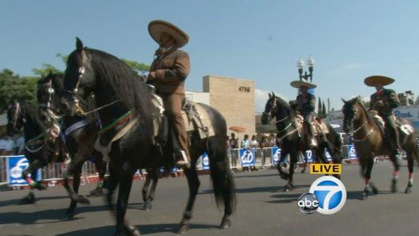 Horses are shown on the parade route during the Mexican In