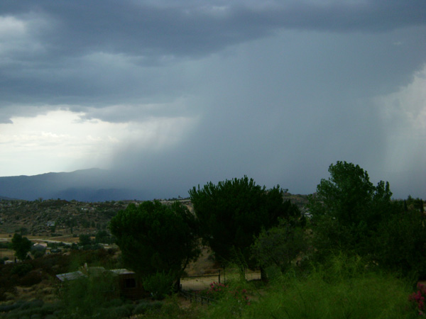 From ABC7 viewer Mike Greyshock, rain on Palomar Mountain on Aug. 25, 2010. &#160;When you see breaking news happen, send your photos to video@myabc7.com, or send them to @abc7 on Twitter <span class=meta>(Mike Greyshock)</span>