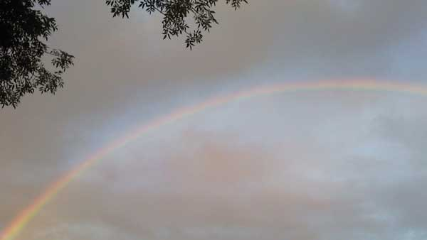 ABC7 viewer Tasha sent in this photo of a rainbow in Riverside following a rain storm on Friday, Oct. 1, 2010.  &#160;When you witness breaking news happen, send your photos to video@myabc7.com, or send them to @abc7 on Twitter <span class=meta>(ABC7 viewer Tasha)</span>