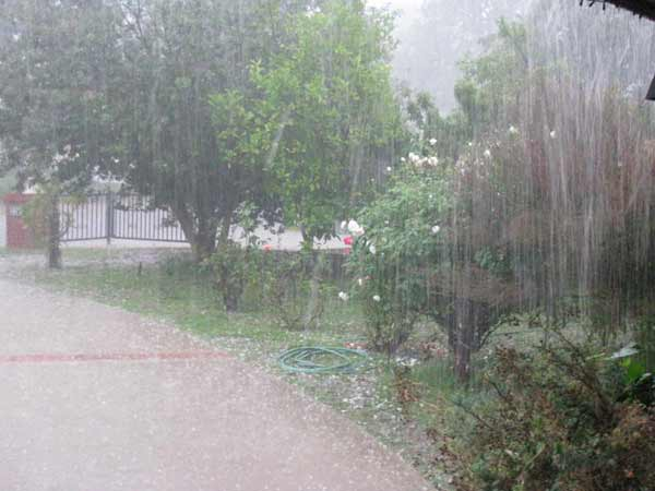 ABC7 viewer Pat Valdivia sent in this photo of hail pelts seen in Simi Valley on Tuesday, October 19, 2010.  When You Witness breaking news, or even something extraordinary, send pictures and video to video@myabc7.com, or send them to @abc7 on Twitter <span class=meta>(ABC7 viewer Pat Valdivia)</span>