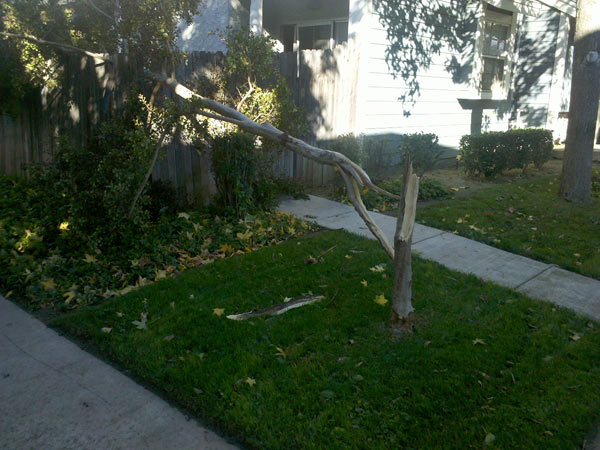 ABC7 viewer Christina Tad sent in this photo of wind damage in Chino on Thursday, Nov. 11, 2010.