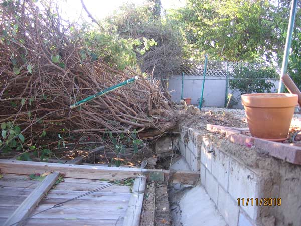 ABC7 viewer Ursula Biloschaetzke of Ontario sent in this photo of wind damage on Thursday, Nov. 11, 2010.  When You Witness breaking news, or even something extraordinary, send pictures and video to video@myabc7.com, or send them to @abc7 on Twitter <span class=meta>(ABC7 viewer Ursula Biloschaetzke)</span>