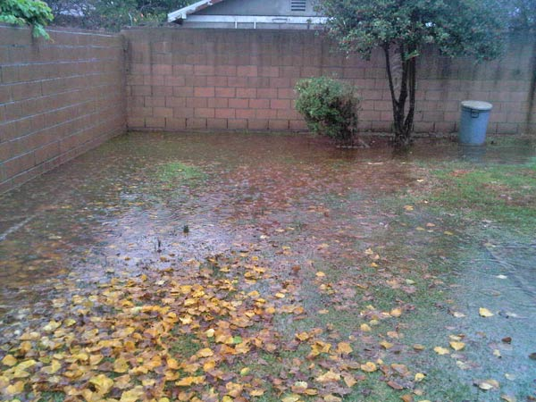 ABC7 viewer Blake Martin sent in this photo of his flooded backyard in Alhambra, Calif., on Monday, Dec. 20, 2010.  When You Witness breaking news, or even something extraordinary, send pictures and video to video@myabc7.com, or send them to @abc7 on Twitter <span class=meta>(ABC7 viewer Blake Martin)</span>