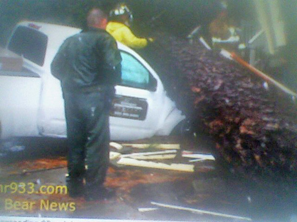 An ABC7 viewer sent in this photo of a tree that toppled over onto a truck in Big Bear Lake on Tuesday, Dec. 21, 2010.   When You Witness breaking news, or even something extraordinary, send pictures and video to video@myabc7.com, or send them to @abc7 on Twitter <span class=meta>(ABC7 viewer)</span>