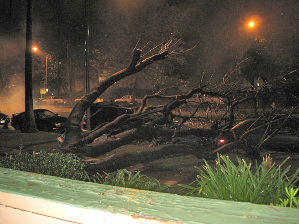 "<div class=""meta image-caption""><div class=""origin-logo origin-image ""><span></span></div><span class=""caption-text"">ABC7 viewer CK Malloy sent in this photo of a downed tree on Sherman Way in Reseda on Tuesday, Dec. 21, 2010.   When You Witness breaking news, or even something extraordinary, send pictures and video to video@myabc7.com, or send them to @abc7 on Twitter (ABC7 viewer CK Malloy)</span></div>"