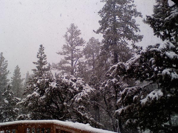 ABC7 viewer Adrianna Magallanes sent in this photo of snow in Big Bear City on Wednesday, Dec. 22, 2010.