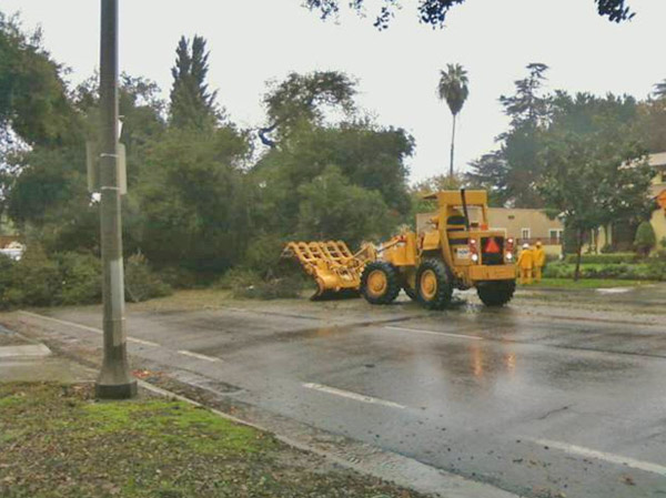 An ABC7 viewer sent in this photo of a fallen tree on Magnolia Avenue in Riverside on Wednesday, Dec. 22, 2010.  When You Witness breaking news, or even something extraordinary, send pictures and video to video@myabc7.com, or send them to @abc7 on Twitter <span class=meta>(ABC7 viewer)</span>