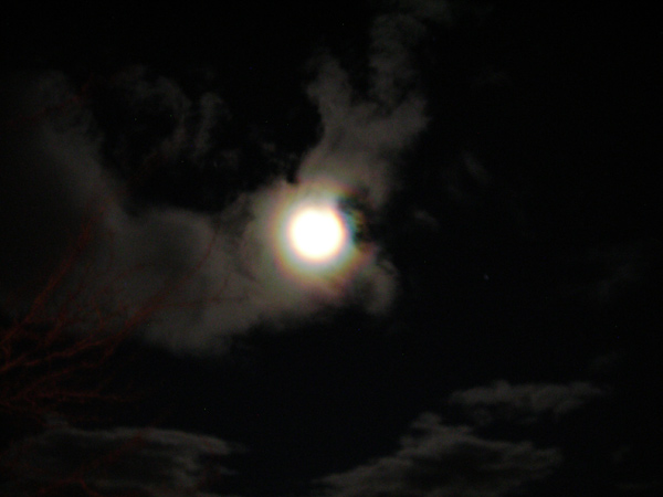 ABC7 viewer Susan M. Ligon  sent in a photo of the moon seen from Mojave, Calif. on Wednesday, Dec. 22, 2010.  When You Witness breaking news, or even something extraordinary, send pictures and video to video@myabc7.com, or send them to @abc7 on Twitter <span class=meta>(ABC7 viewer Susan M. Ligon)</span>