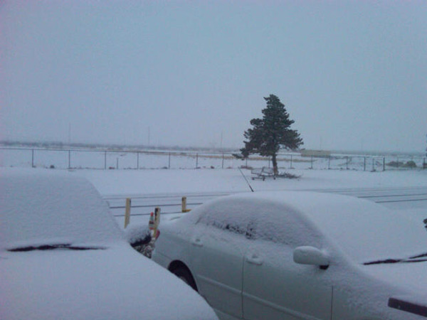 ABC7 viewer Susan Ligon sent in this photo of snow in Mojave, Calif. on Sunday Jan. 2, 2011.  When You Witness breaking news, or even something extraordinary, send pictures and video to video@myabc7.com, or send them to @abc7 on Twitter <span class=meta>(ABC7 viewer Susan Ligon)</span>