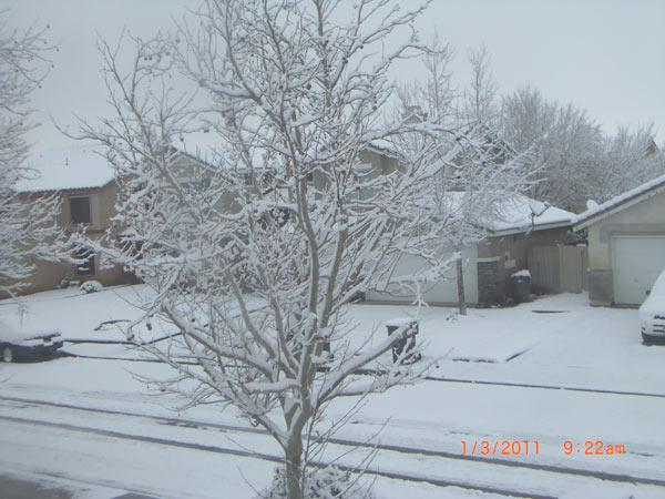 An ABC7 viewer sent sent in this photo of snow in Palmdale, Calif. on Monday, Jan. 3, 2011.  When You Witness breaking news, or even something extraordinary, send pictures and video to video@myabc7.com, or send them to @abc7 on Twitter <span class=meta>(ABC7 viewer)</span>