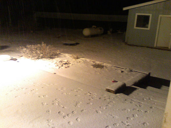 ABC7 viewer Andrea Umberson sent in this photo of snow in Phelan, Calif. on Sunday Jan. 2, 2011.