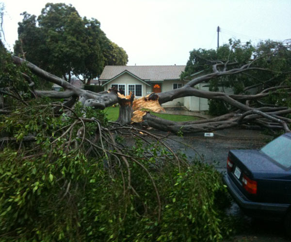 "<div class=""meta image-caption""><div class=""origin-logo origin-image ""><span></span></div><span class=""caption-text"">The Ventura County Fire Department sent ABC7 these photos of a tree that fell on a house in Ventura on Wednesday Feb. 16, 2011.  When You Witness breaking news, or even something extraordinary, send pictures and video to video@myabc7.com, or send them to @abc7 on Twitter (KABC photo/Ventura County Fire Department)</span></div>"