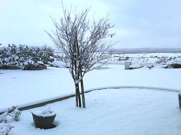 ABC7 viewer Fran sent in this photo of snow in Aguanga, Calif. on Saturday Feb. 26, 2011.  When You Witness breaking news, or even something extraordinary, send pictures and video to video@myabc7.com, or send them to @abc7 on Twitter <span class=meta>(KABC photo&#47; Fran)</span>
