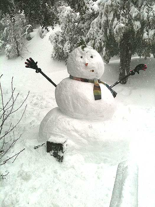 An unnamed ABC7 viewer sent in this photo of a snowman in Crestline, Calif. on Saturday Feb. 26, 2011.  When You Witness breaking news, or even something extraordinary, send pictures and video to video@myabc7.com, or send them to @abc7 on Twitter  <span class=meta>(KABC photo)</span>