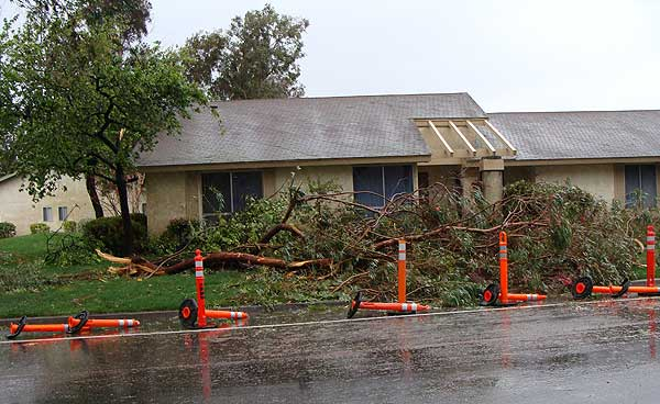 "<div class=""meta ""><span class=""caption-text "">ABC7 viewer Marvin B. sent in this photo of a fallen tree in Camarillo, Calif., on Sunday March 20, 2011.  When You Witness breaking news, or even something extraordinary, send pictures and video to video@myabc7.com, or send them to @abc7 on Twitter (KABC photo / Marvin B.)</span></div>"
