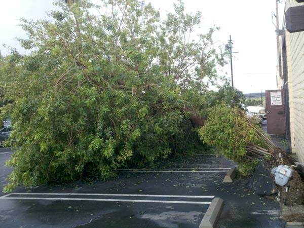 ABC7 viewer Hovik Sinanian sent in this photo of storm damage on Monday, March 21, 2011. &#160;When you witness breaking news happen, send your photos to video@myabc7.com, or send them to @abc7 on Twitter <span class=meta>(ABC7 viewer Hovik Sinanian)</span>