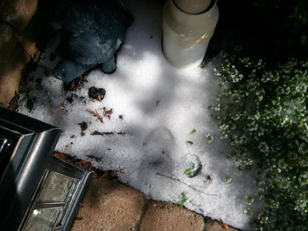 ABC7 viewer Alicia Lind sent in this photo of hail in Porter Ranch on Monday, March 21, 2011. &#160;When you witness breaking news happen, send your photos to video@myabc7.com, or send them to @abc7 on Twitter <span class=meta>(ABC7 viewer Alicia Lind)</span>