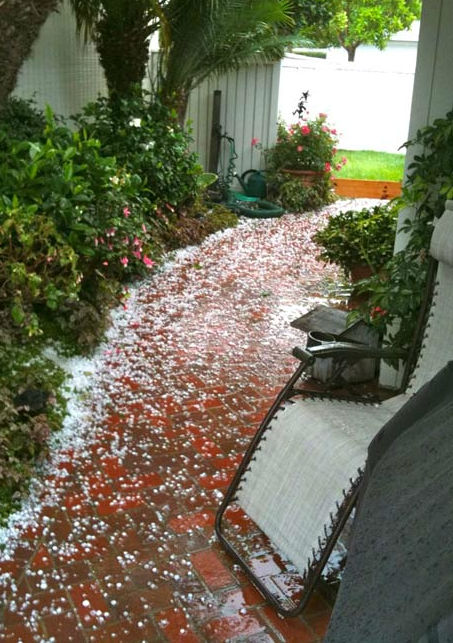 ABC7 viewer Chuck Prince took this photo of hail that fell in Monarch Beach about 7 a.m. Saturday, Sept. 10, 2011. <span class=meta>(Chuck Prince)</span>