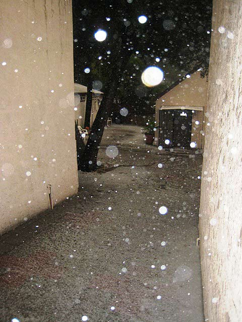 ABC7 viewer Kristiina Lalor sent in this photo of hail in Tujunga on Sunday Nov. 6, 2011.  When You Witness breaking news, or even something extraordinary, send pictures and video to video@myabc7.com, or send them to @abc7 on Twitter  <span class=meta>(KABC photo&#47;  Kristiina Lalor)</span>