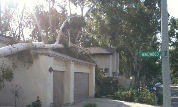 ABC7 viewer Heather Richardson sent in this photo of wind damage in Lake Forest, Calif. on Thursday, Dec. 1, 2011. &#160;When you witness breaking news happen, send your photos to video@myabc7.com, or send them to @abc7 on Twitter <span class=meta>(KABC Photo&#47; ABC7 viewer Heather Richardson)</span>