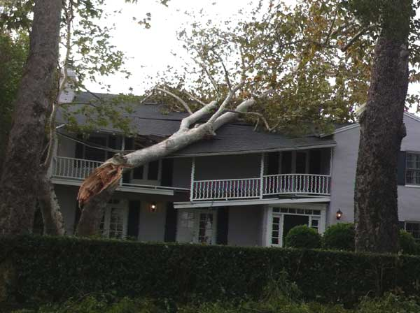 ABC7 viewer David Silvas sent in this photo of a tree that fell on a house in Pasadena, Calif. on Thursday, Dec. 1, 2011. &#160;When you witness breaking news happen, send your photos to video@myabc7.com, or send them to @abc7 on Twitter  <span class=meta>(KABC Photo&#47; ABC7 viewer David Silvas)</span>