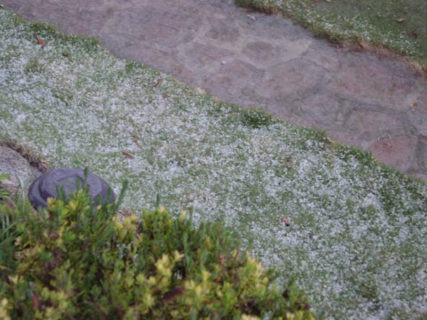 ABC7 viewer Larry Broyhill posted this photo to the ABC7 Facebook wall of hail in Hemet on Thursday, Dec. 15, 2011. &#160;When you witness breaking news happen, send your photos to video@myabc7.com, or post them to the ABC7 Weather Facebook page <span class=meta>(KABC Photo&#47; ABC7 viewer Larry Broyhill)</span>