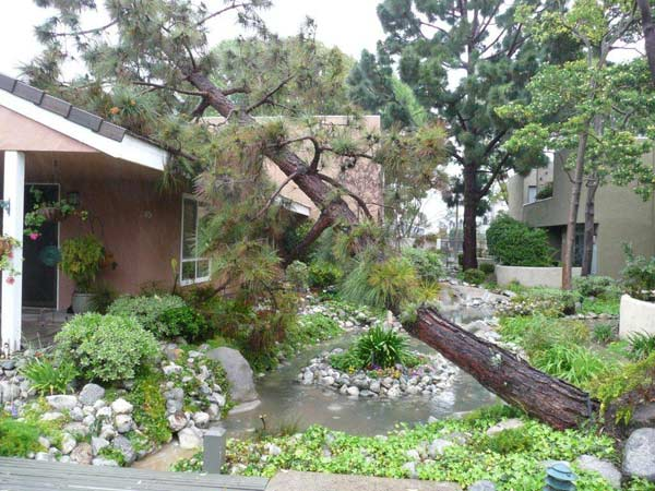 ABC7 viewer Bill Nesbitt of Stanton sent in this picture of a fallen tree on his condo as a result of heavy rain and strong winds from a storm that passed over Southern California on Saturday March, 17, 2012.