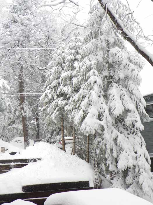 "<div class=""meta ""><span class=""caption-text "">ABC7 viewer Nancy Castorena Isenberg posted this photo on the ABC7 Facebook page of snow in Running Springs after a storm passed over Southern California on Sunday March, 18, 2012.  When You Witness breaking news, or even something extraordinary, send pictures and video to video@myabc7.com, or send them to @abc7 on Twitter or our ABC7 Facebook page. (ABC7 viewer Nancy Castorena Isenberg)</span></div>"