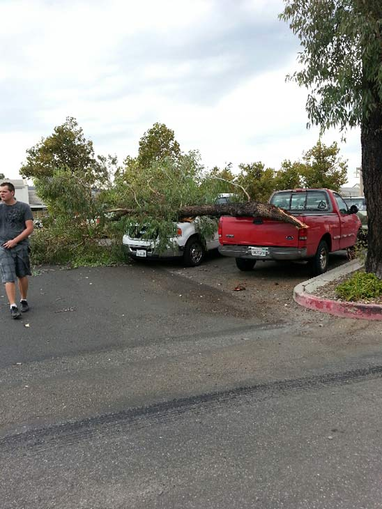 "<div class=""meta ""><span class=""caption-text "">ABC7 viewer Cynthia Brewer sent in this photo of a tree branch that fell on two vehicles in Temecula during a wild summer storm on Thursday, August 30, 2012.   When You Witness breaking news, or even something extraordinary, send pictures and video to video@abc7.com, or post them to the ABC7 Facebook page or to @abc7 on Twitter   (ABC7 / ABC7 viewer Cynthia Brewer)</span></div>"