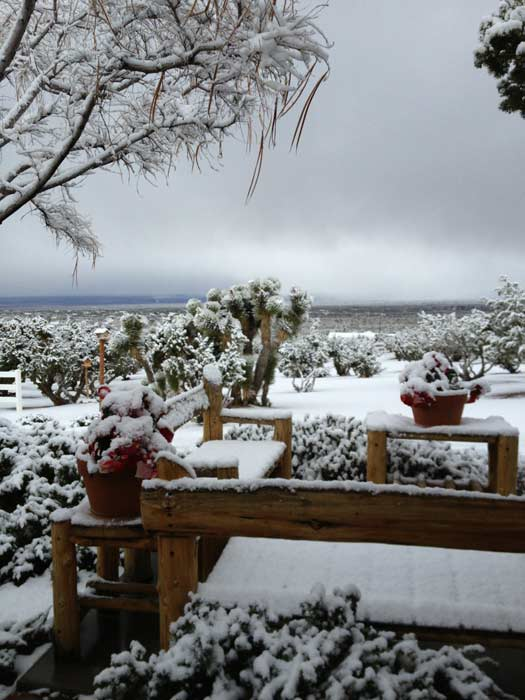 An ABC7 viewer sent us this photo of snow in Pinon Hills during a storm that hit Southern California on Friday, March. 8, 2013.
