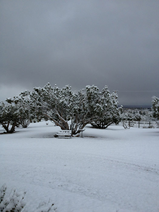 "<div class=""meta image-caption""><div class=""origin-logo origin-image ""><span></span></div><span class=""caption-text"">An ABC7 viewer sent us this photo of snow in Pinon Hills during a storm that hit Southern California on Friday, March. 8, 2013.  When You Witness breaking news, or even something extraordinary, send pictures and video to video@abc7.com, or post them to the ABC7 Facebook page or to @abc7 on Twitter  (ABC7 viewer)</span></div>"