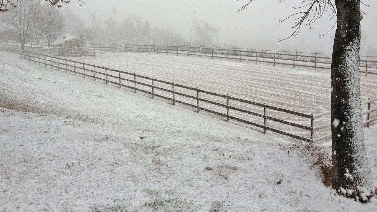 An ABC7 viewer sent us this photo of snow in Agua Dulce following a storm that hit Southern California on Friday, Feb. 8, 2013. <span class=meta>(ABC7 viewer)</span>