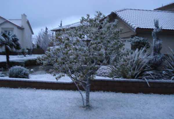 ABC7 viewer Betty Nicholson sent in this photo of snow at Palmdale, Calif. on Saturday Feb. 26, 2011.  When You Witness breaking news, or even something extraordinary, send pictures and video to video@myabc7.com, or send them to @abc7 on Twitter <span class=meta>(KABC photo&#47; Betty Nicholson)</span>