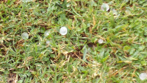 An ABC7 viewer sent in this photo of hail in Orange during a storm on Friday, Oct. 1, 2010.&#160;When you witness breaking news happen, send your photos to video@myabc7.com, or send them to @abc7 on Twitter <span class=meta>(ABC7 viewer)</span>