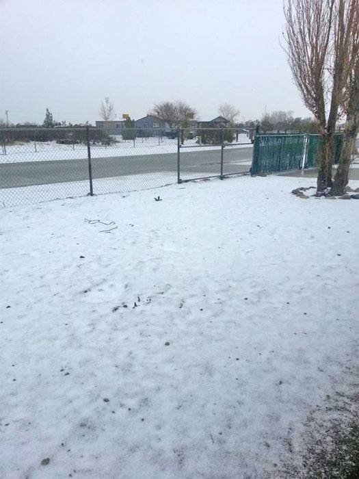 "<div class=""meta image-caption""><div class=""origin-logo origin-image ""><span></span></div><span class=""caption-text"">ABC7 viewer Marina Arriaga sent us this photo via Facebook of snow in Littlerock, Calif. during a storm that hit Southern California on Friday, Feb. 8, 2013.  When You Witness breaking news, or even something extraordinary, send pictures and video to video@abc7.com, or post them to the ABC7 Facebook page or to @abc7 on Twitter  (ABC7 viewer Marina Arriaga)</span></div>"