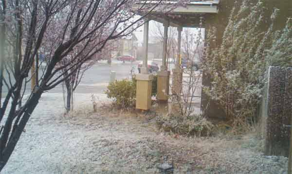 An ABC7 viewer sent in this photo of snow at Victorville, Calif. on Saturday Feb. 26, 2011.  When You Witness breaking news, or even something extraordinary, send pictures and video to video@myabc7.com, or send them to @abc7 on Twitter <span class=meta>(KABC photo)</span>