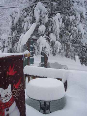 ABC7 viewer Pat Smith sent in this photo of snow at Idyllwild, Calif. on Saturday Feb. 26, 2011.