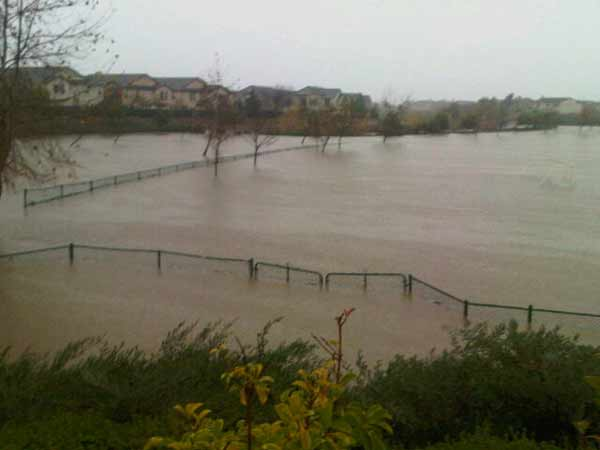 ABC7 viewer Patty Mesa sent in this photo of Sheffield Park on Wednesday, Dec. 22, 2010. When You Witness breaking news, or even something extraordinary, send pictures and video to video@myabc7.com, or send them to @abc7 on Twitter <span class=meta>(ABC7 viewer Patty Mesa)</span>